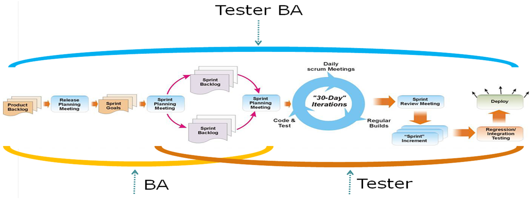 Can Software Tester Become a Business Analyst